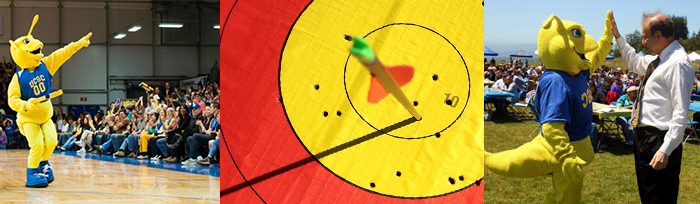 Sammy hits a bulls eye- representing the attainment and celebration of shared goals.
