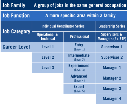 Chart outlining UC Job Structure from the family level to more specific function, category and career level.