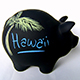 Piggy bank with Hawaii written on the side.